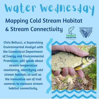 NPTU and PRWC welcome CT DEEP's Chris Bellucci to Discuss Stream Connectivity and Cold Water Habitat