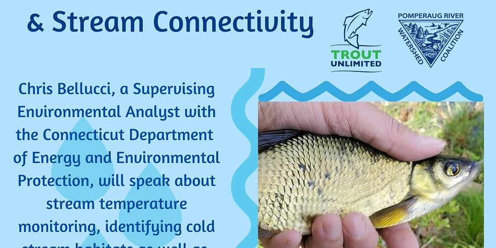 Stream Connectivity and Cold Water Stream Habitat