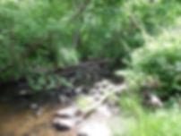 WeekR Beth - Wood Creek Rd Bridge US - B