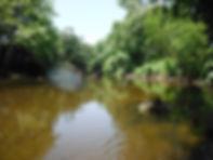 Pomperaug River at Cedarland Park 2013.j
