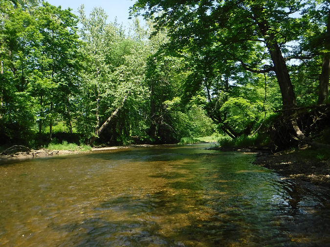 Pomperaug River at Audubon Bent of the R