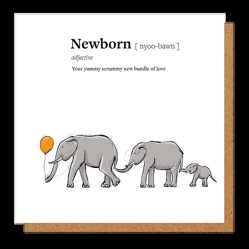 Newborn Definition Card