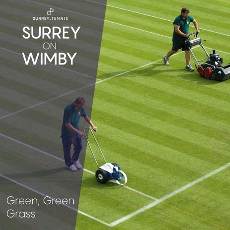 Surrey-on-Wimby-Green-Green-Grass.png