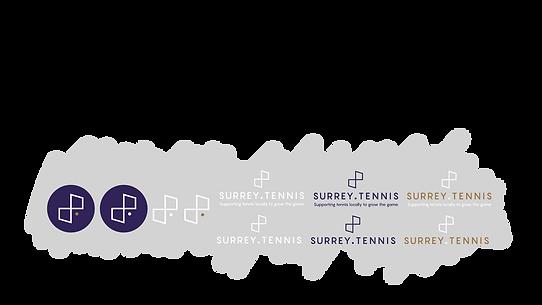 Portfolio-logo-variants.png