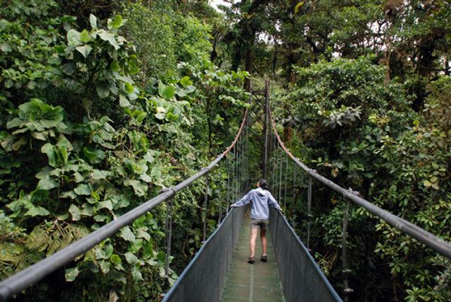 Tour Monteverde.jpg