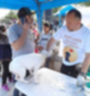 Peru-rescue-centre-sterilization-campaig