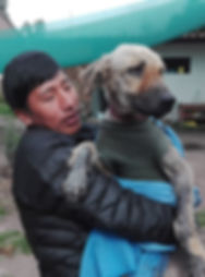 Peru-rescue-centre-local-volunteer.jpg