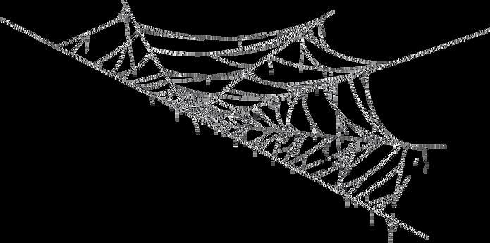 Spiderweb 3.png