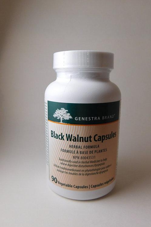 Black walnut (Genestra)