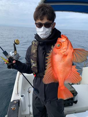 2021.02.14 根魚便♪
