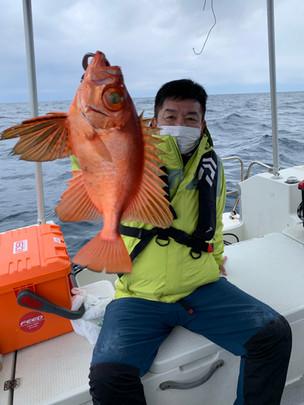 2021.03.012 根魚便♪