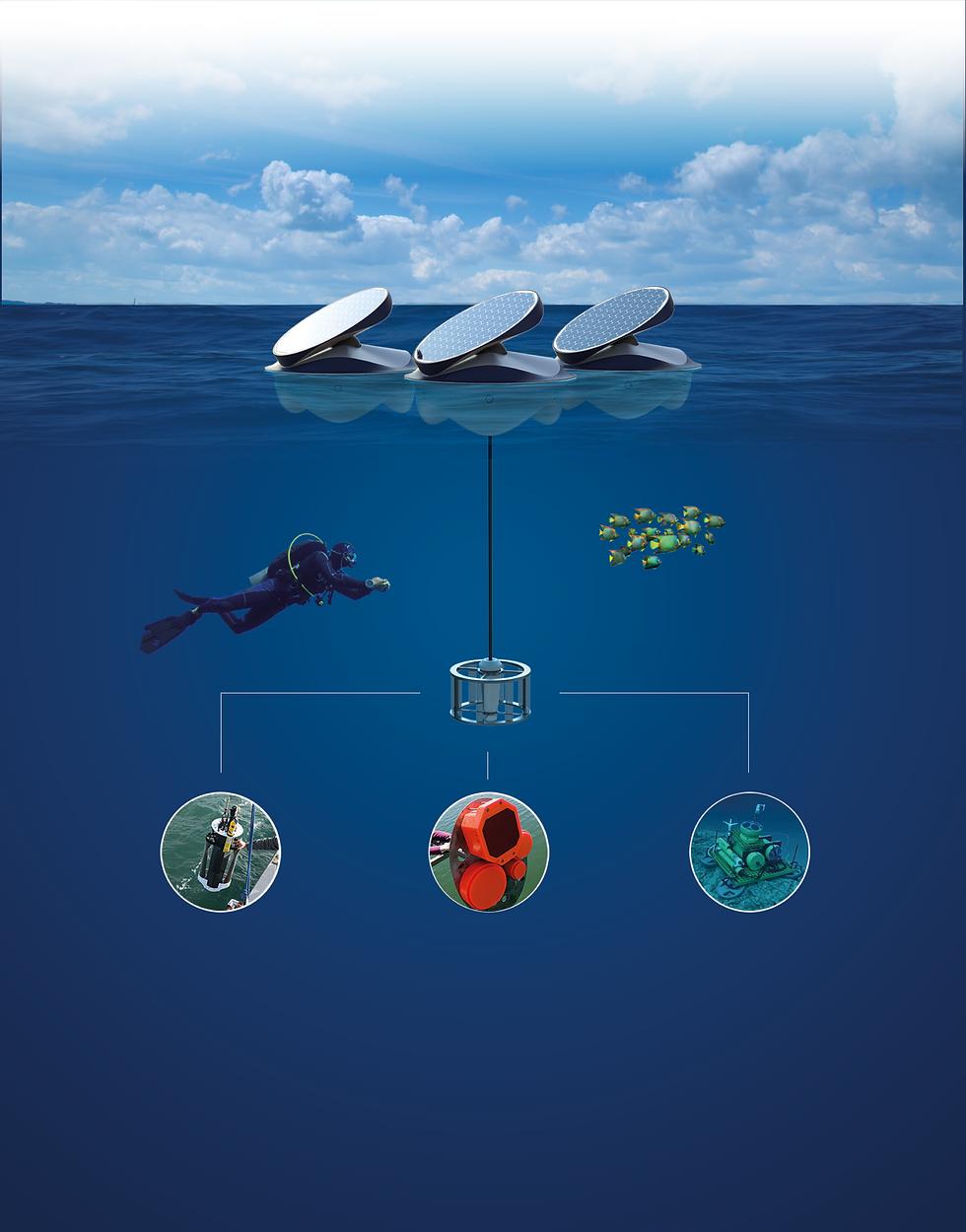 Marine Diagram.png