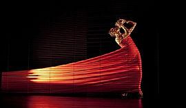 Nuit de la danse