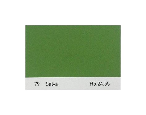 Color 79 Selva