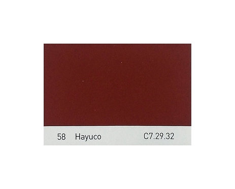 Color 58 Hayuco