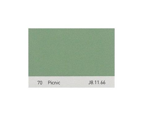 Color 70 Picnic