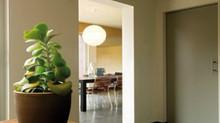 Psicología del color ¿Cómo escoger los colores para tu casa?