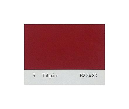 Color 5 Tulipán