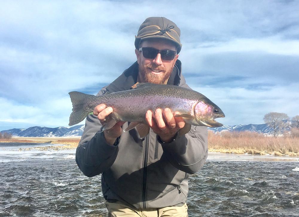 Rainbow trout on Madison River in winter, below Varney Bridge.
