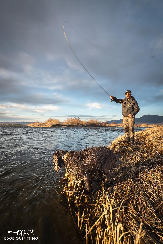 Photo of fishing dog and angler casting