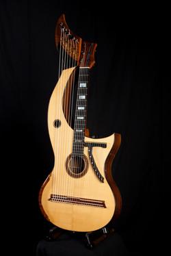 Mewburn Harp Guitar-1