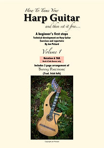 How to tame your Harp Guitar (instruction manual vol 1)