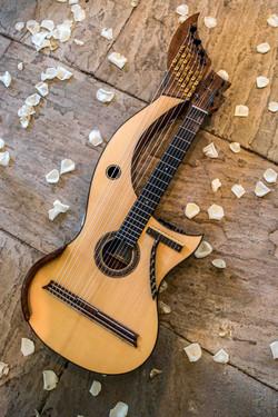 23 string Harp Guitar