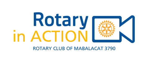 rt in action logo.png