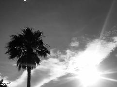 Soleil dans le sud