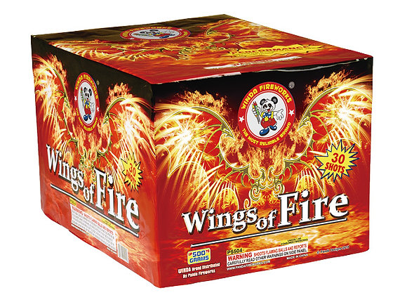 WINGS OF FIRE 30'S