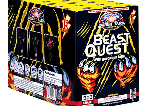 BEAST QUEST 15'S