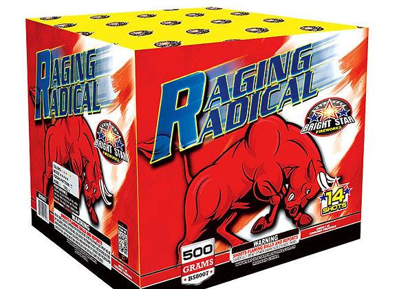 RAGING RADICAL 14 'S