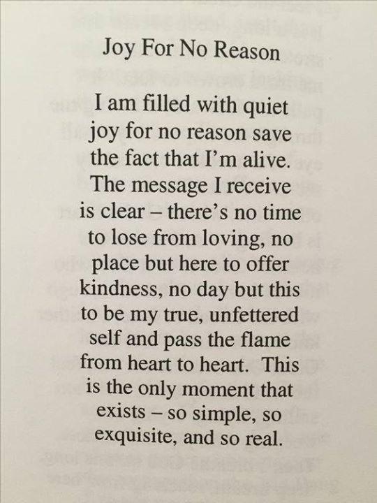Joy Love Kindness Now