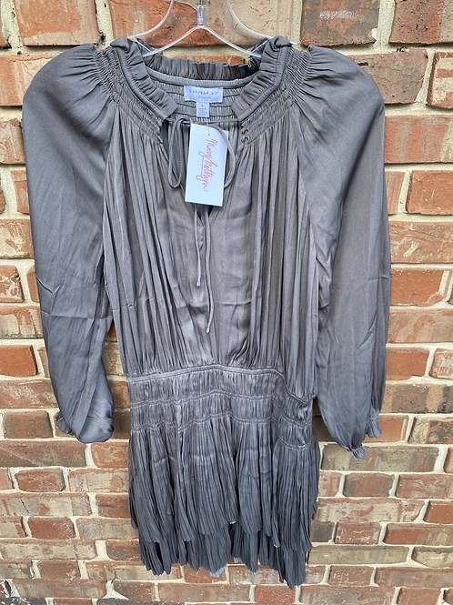 Gray Long sleeve dress with Sinched Waist