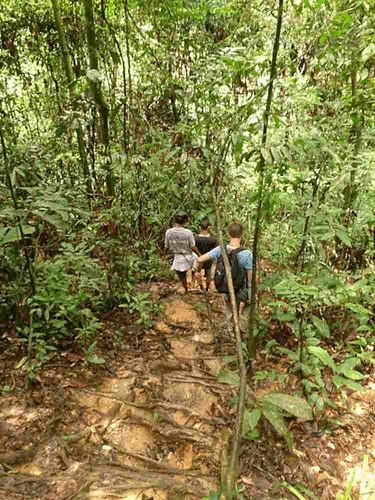 trekking-bukit-lawang.JPG