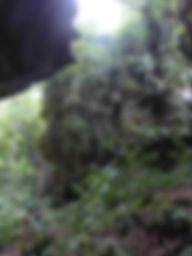 eco-trek-batu-kelinci.JPG