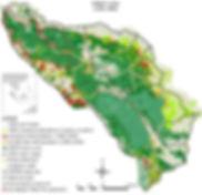 Map-of-deforestation-GLNP-1990-2006.jpg