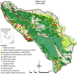Map-of-deforestation-GLNP-1990-2006.jpg