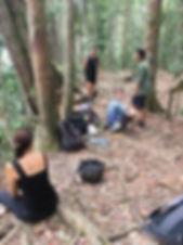 responsible-jungle-trek-glnp.jpg