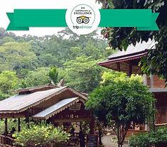 Eriono guesthouse-Bukit-Lawang