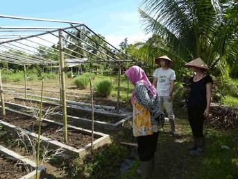visit Erna-eco-farm.jpg
