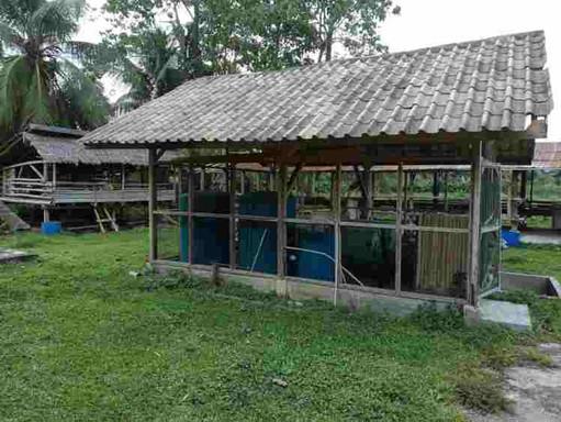 biogas-pphl eco-farm.jpg