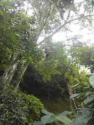 batu kelinci 2-day-trek.jpg