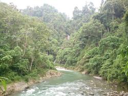 Bahorok River