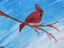 Cardinal (All Ages)