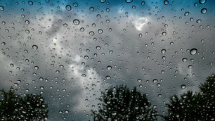 Valle de Guadalupe rainy season