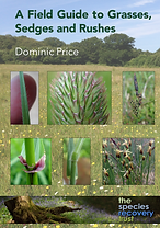 Grasses Book Cover.png