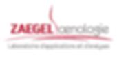 Zaegel-logo.png