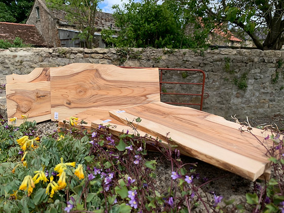 Yew Plank (sanded) 250mm x 130mm x 8mm