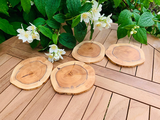 Set of 4 Yew drinks coasters